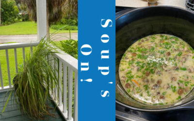 Thai Coconut Soup is Great in the Summer Too!